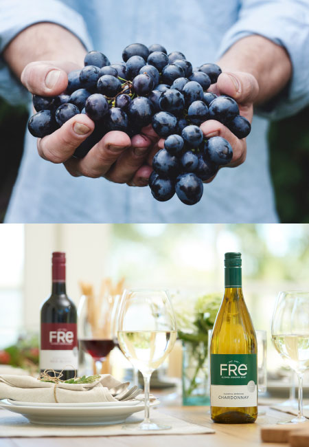 How Is Our Non-Alcoholic Wine Made? | Fre Wines